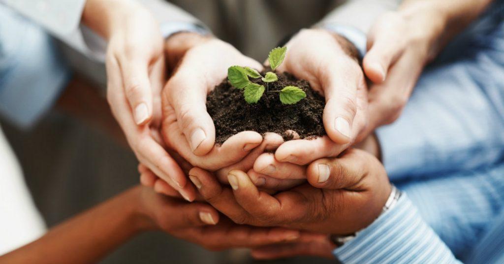 Balans4you Blog Complexe vraagstukken vragen om adaptief leiderschap